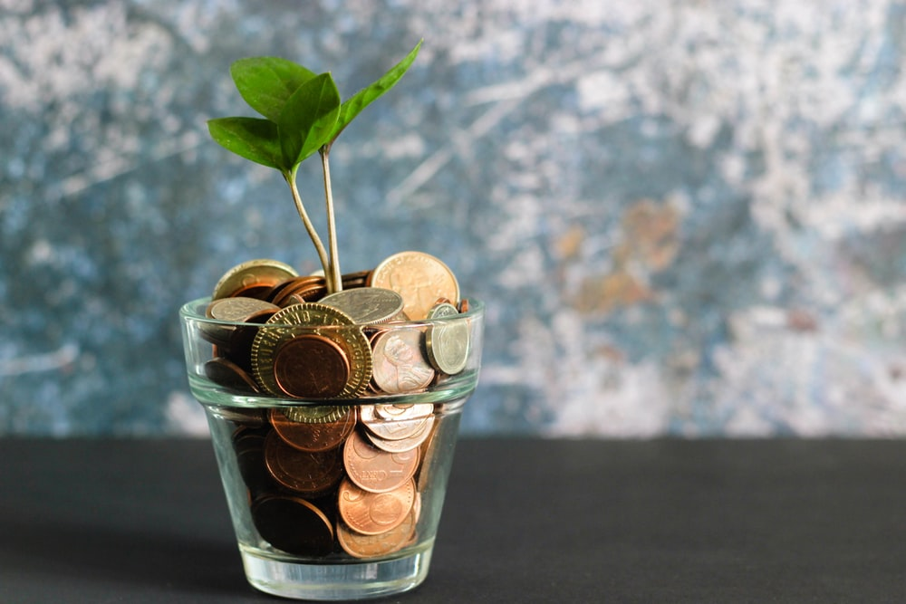 お金が入った植木鉢