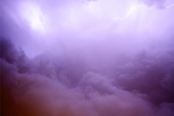紫色の景色